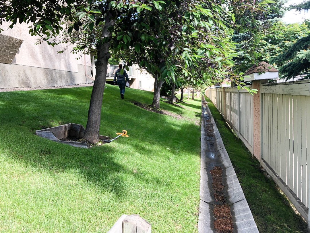 Trusted Lawn Care Calgary Pros 2